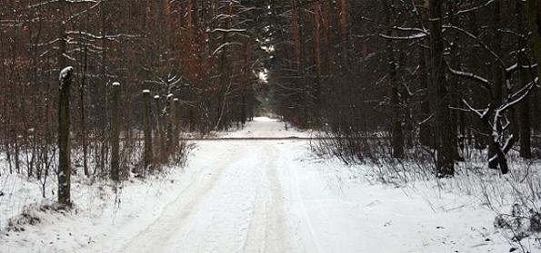 Opony zimowe z kolcami